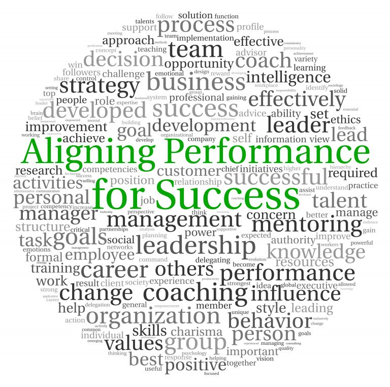 What is Performance Coach or Executive Coach